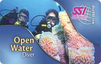 Обучение дайвингу в Санкт-Петербурге, курсы дайвинг в спб SSI Open Water Diver