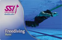 Обучение фридайвингу SSI Freediving Basic в Санкт-Петербурге