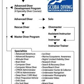 Обучение дайвингу в Санкт-Петербурге SDI Scuba Diving International