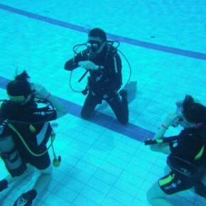 Обучение дайвингу курс Open Water Diver