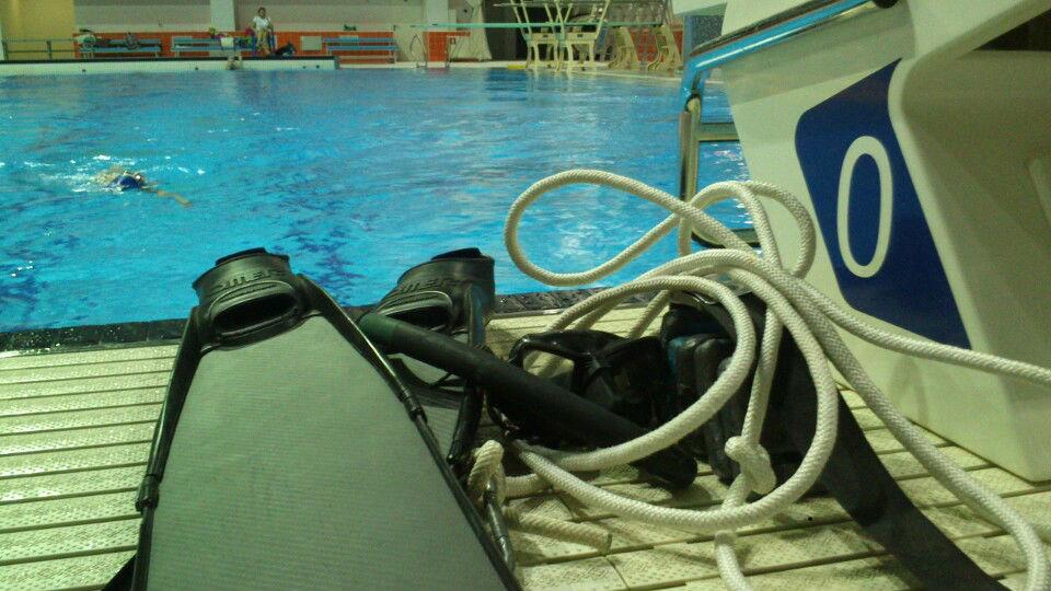 Курс фридайвинга Freediving Basic