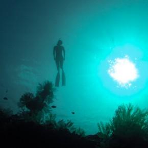 Обучение фридайвингу на Бали, курсы фридайвинг бали уровень 1, SSI Freediving Level 1