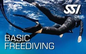 SSI Freediving Basic