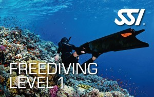 Freediving Level